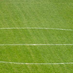 Foto de Campo de Futbol La Aldehuela