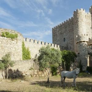 Foto de Castillo de La Coracera